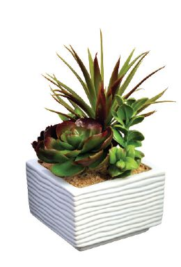 Artificial Potted Cactus 3