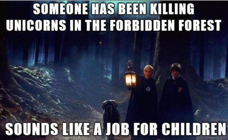 25 of the Most Hilarious 'Harry Potter' Memes | Inverse #harrypotter