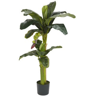 Features:  -Leaves are a variety of vibrant green.  -Plant is enhanced with tiny…