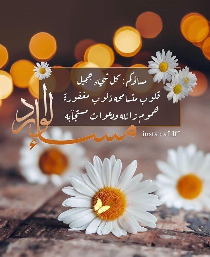 مساؤكم كل شئ جميل Good Evening Wishes Evening Greetings Good Morning Flowers