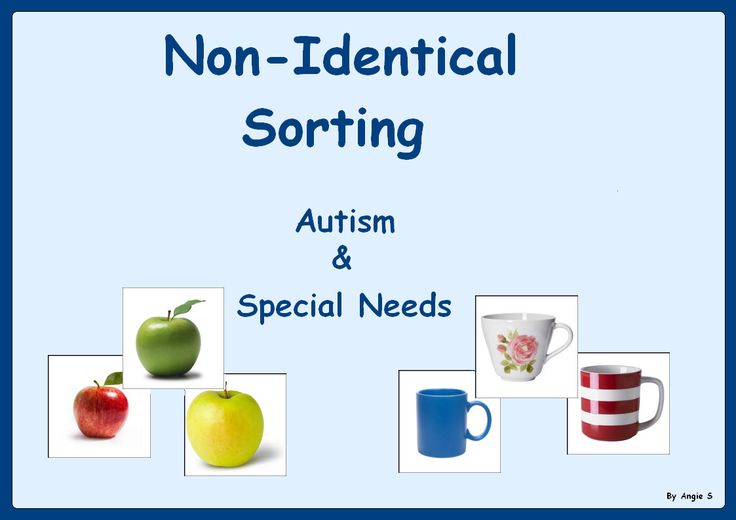 Non-Identical Sorting -Autism & Special Needs Activity- For more resources follow http://www.pinterest.com/angelajuvic/angie-s-tpt-store/