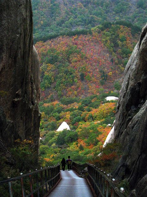 Path to Ulsan Bawi Rocks in Seoraksan National Park, South Korea (by Yoshi).