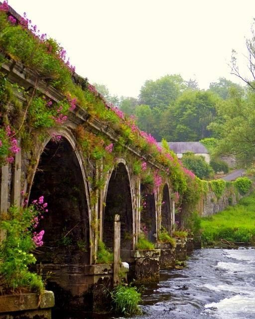 Inistioge Bridge in County Kilkenny, Ireland.