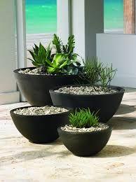 Image result for Large saucer shape planter