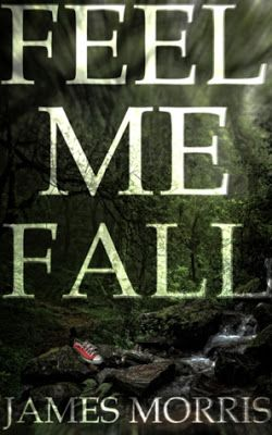 Book Blitz & Giveaway - Feel Me Fall by James Morris