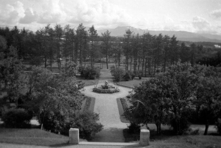 Parken sett fra sykehuset.