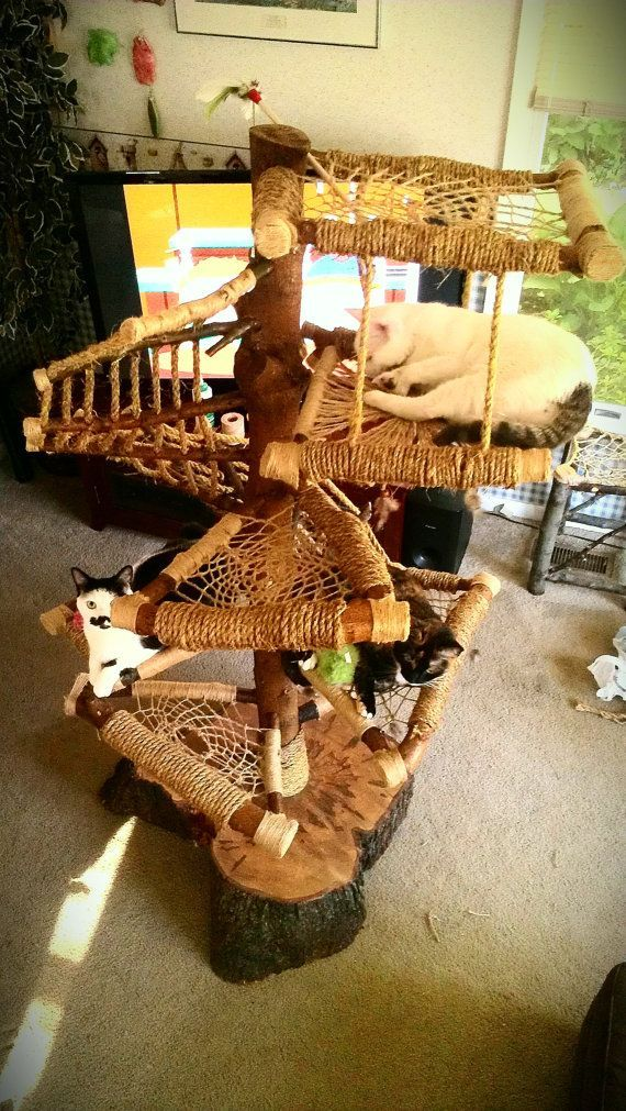 Custom Handmade Cat Trees - Rustic Designs Done Completely At Your Request