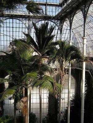 219 Best Botanical Gardens On Pinterest Images On Pinterest