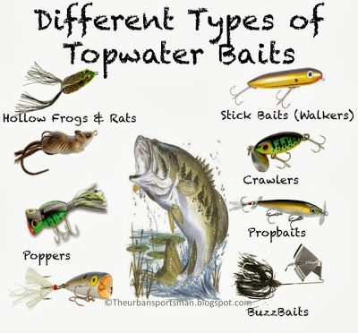 362 best fishing images on pinterest fly fishing flies for Bass fishing knots