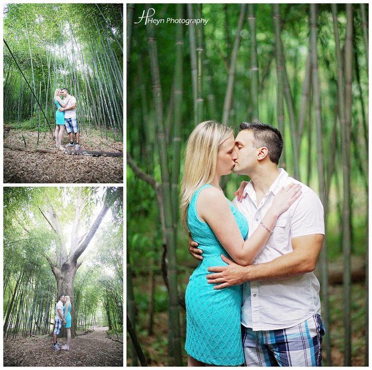 Bamboo Forest at Rutgers Gardens #Rutgers #RU