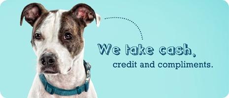 Donate Now - Austin Humane Society
