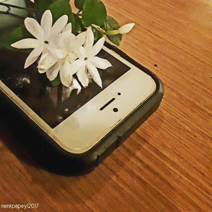 . Cantik... Istimewa... ❤❤❤ #jasmine #flowers #bunga #bungamelati #melati #melatiputih #bungamawar #mawar #bungaputih #sayitwithflowers #white #beautifulinwhite #kembang #beautiful http://misstagram.com/ipost/1571793625120214905/?code=BXQIfltg495