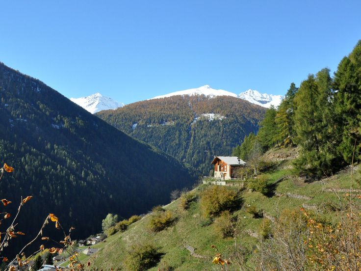 Amazing #mountainhouse, chalet in #Trentino, Val di Rabbi, Stelvio National park.You rent either the left or right side of the house Suited for 4 people, dogs welcome.