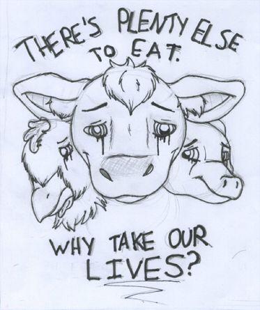 Animal Rights Project by MercuryShine.deviantart.com on @deviantART