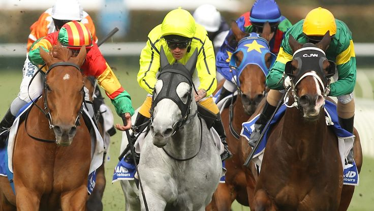Foreteller (right) moves ahead of Crackerjack King (middle) to win the Hyland Race Colours Underwood Stakes