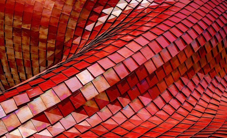 Red roof photo by Ricardo Gomez Angel (@ripato) on Unsplash