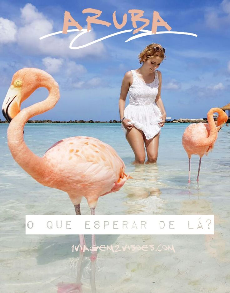 O que exatamente esperar de Aruba? Vamos falar sobre o que essa ilha holandesa caribenha de mar incrivelmente azul, e pessoas incrivelmente alegres, costuma causar em todos os viajantes que passam por lá. Aruba é considerado um dos destinos mais incríveis (ou O mais) do Caribe, e no texto você vai entender mais os motivos. Na foto: Os flamingos lindos de Flamingo Beach, na Renaissance Island em Aruba (e eu boba feliz). Lugar imperdível pra quem ama animais, flamingo cor de rosa e mar azul…