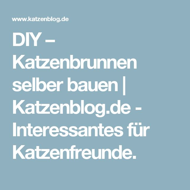 DIY – Katzenbrunnen selber bauen | Katzenblog.de - Interessantes für Katzenfreunde.