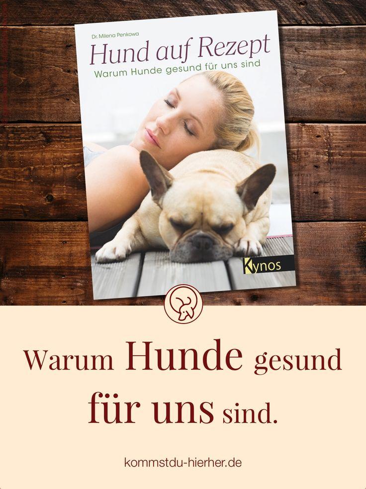 255 best sch nes n tzliches zubeh r f r den hund images on pinterest dog cat dog. Black Bedroom Furniture Sets. Home Design Ideas