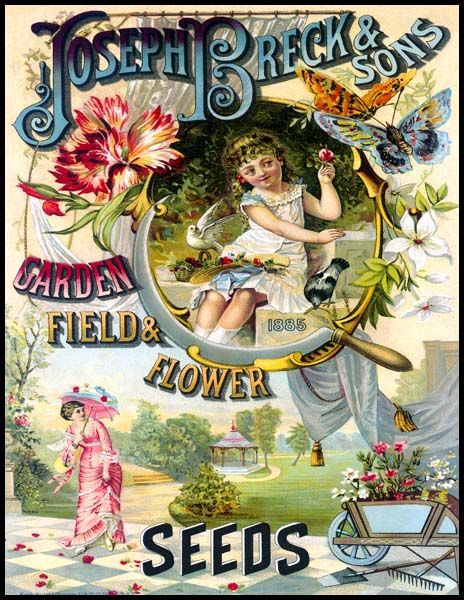 Joseph Breck & Sons 1885 [BD137-8511] : Wholesale and Resale product opportunities for the gift shop and wall art markets, A premium fine art product at wholesale prices
