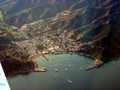 Avalon Harbor // Catalina Island, California