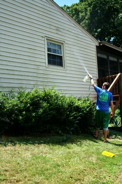 Mold Busters (Or How to Clean Vinyl Siding) - Rhapsody in Rooms