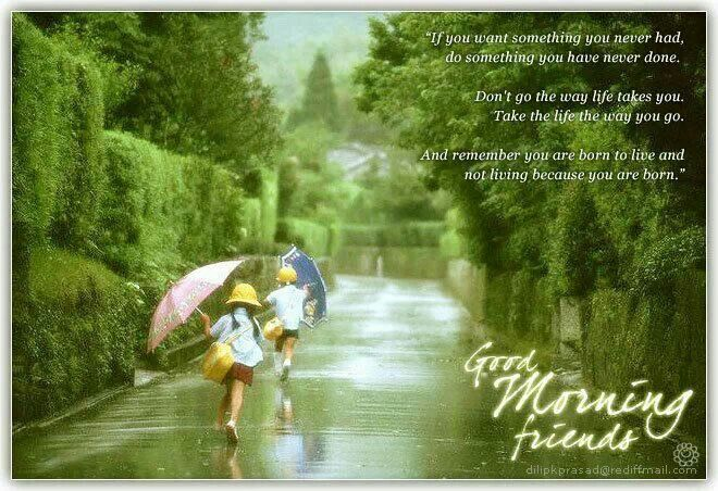 Good Morning Rainy Images: Rainy Day...Good Morning Friends