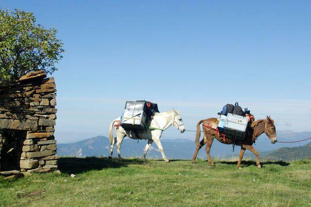 Caracol Tours, pionero del turismo slow en España