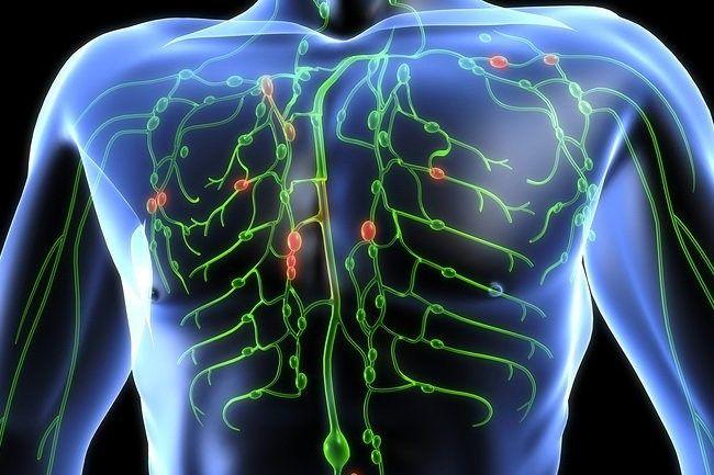 Návod, jak vyčistit lymfatický systém a odstranit toxiny z těla