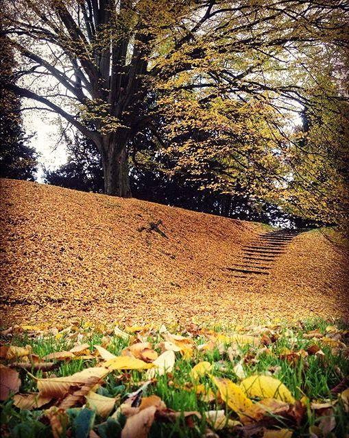 In the park… Aldenhofpark, Maastricht