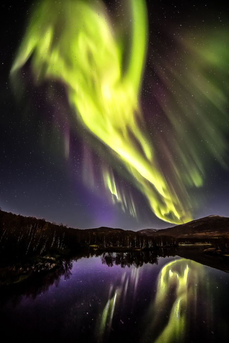Northern Lights | Norway The Scream?