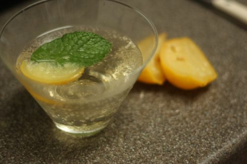 moroccan g&t: make with mint simple syrup and garnish with preserved lemon