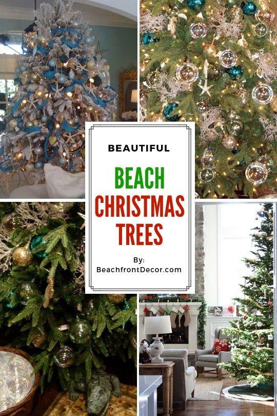 25+ Beach Christmas Tree Ideas Beach Christmas Trees Beach