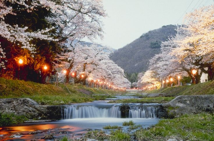 visit-city-of-ten-thousand-shrines-kyoto-japan-extreme-outdoor-holiday-adventure (28)