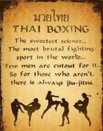 oh my hahaha I definitely will have to show this one to Chad after I start Muay Thai training ;)
