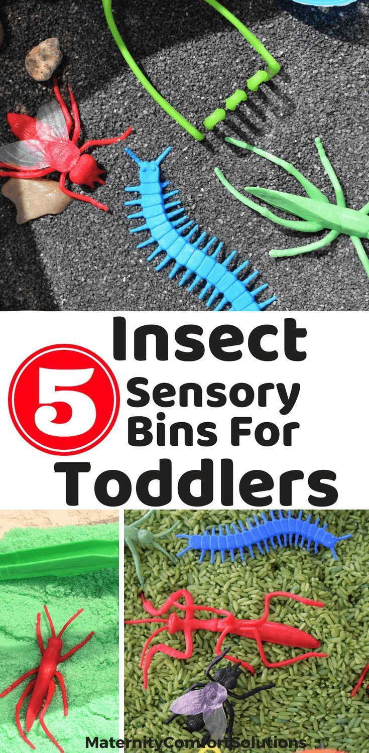 Summer Bug Sensory Bin Ideas For Toddlers Toddlers