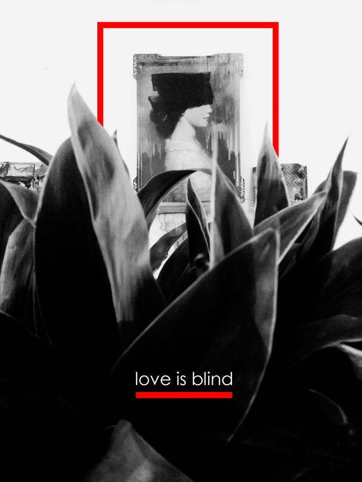 love is blind - fioreria donaflor - thiene - vicenza