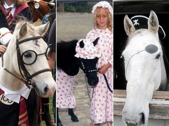 halloween costumes horse mask