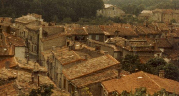 Über den Dächern von Carcasonne, Foto: S. Hopp