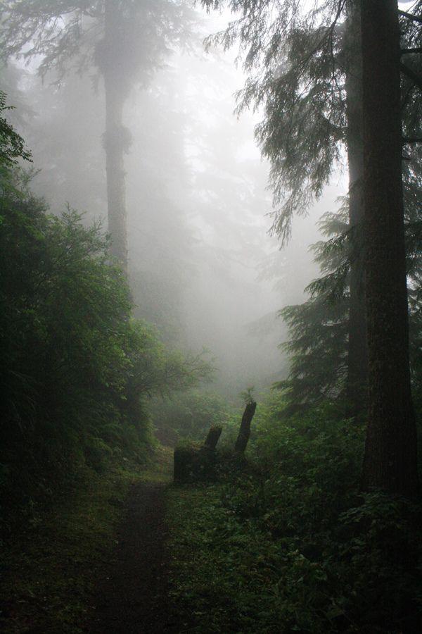 Maybe a place for the farm? Oregon Coast