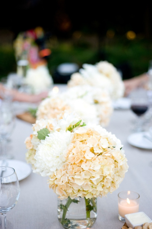 pale peach hydrangeas lining the tables  Photography By / karenwise.com, Planning By / greenribbonparties.com