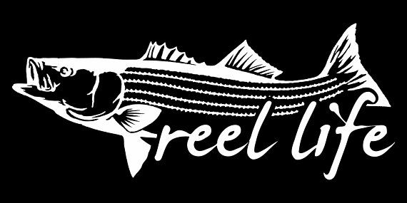 """Bass Fishing Tackle Warehouse Sticker Decals 6/""""x4/"""""""