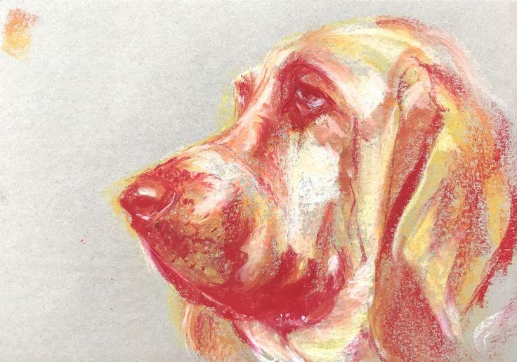 Bella. A3 size - oil pastel drawing. Bloodhound. Dog portrait