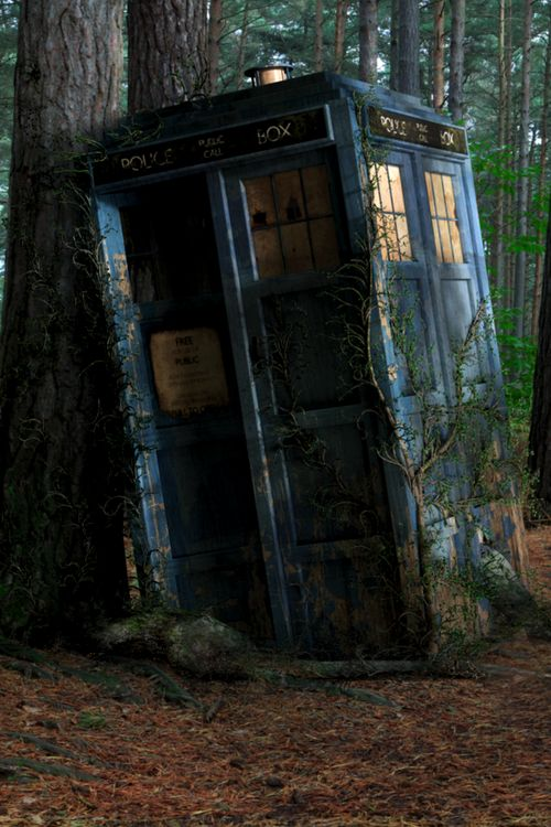 Let the TARDIS die. Just let this old box gather dust. No one can open it, no one will even notice. Let it become a strange thing standing on a street corner. And over the years the world will move on and the box will be buried. -Ninth Doctor, Parting of the Ways