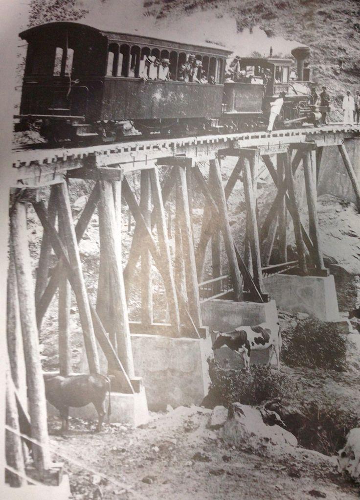 FERROCARRIL DE CUCUTA en la ruta a Puerto Santander, en la frontera con Venezuela, primer década del siglo XX