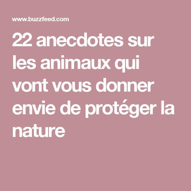 22 anecdotes sur les animaux qui vont vous donner envie de protéger la nature