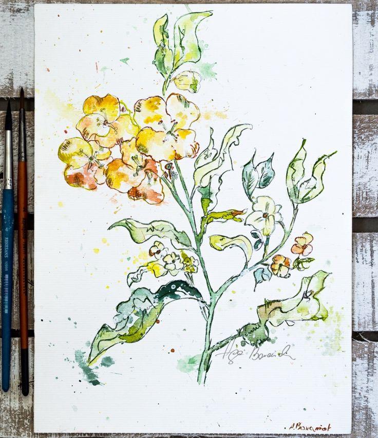 Watercolors flower by Aga Baraniak