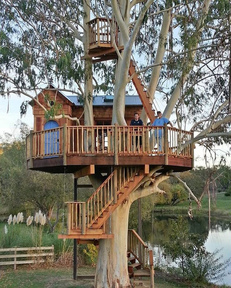 Would you #treescape here? We would. Another example of a beautiful #treehouse built in a #eucalyptus #tree  via @casa_en_el_arbol Shoutout if you know builder/ designer/ photographer/ location. #treehouses #treehouseclub #tinyhouse #tinyhouses #tinyhome by treehouseclub_