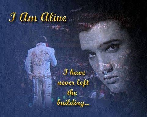 """elvis presley a tragic hero Young fans of elvis presley try to get closer to their hero in germany on oct 1,   he would later call her death """"the great tragedy of his life."""