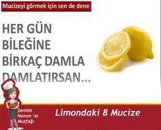 limon yagı beyin aktivitenizi arttırıyor